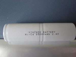 XR No.:001 2PCS D5000mAh 2.4V